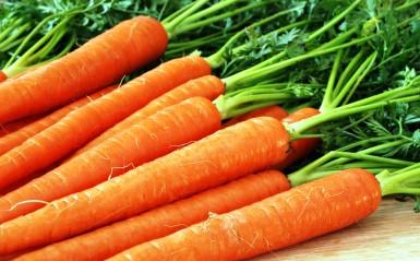 Холодильная камера для моркови