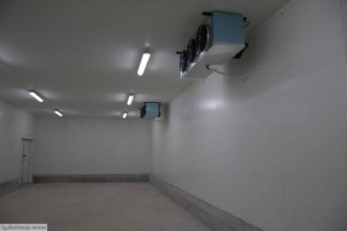 Морозильные камеры для малины